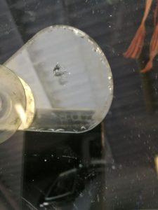 Ремонт лобового стекла в Москве картинка 1
